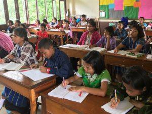 scuola-bamboo